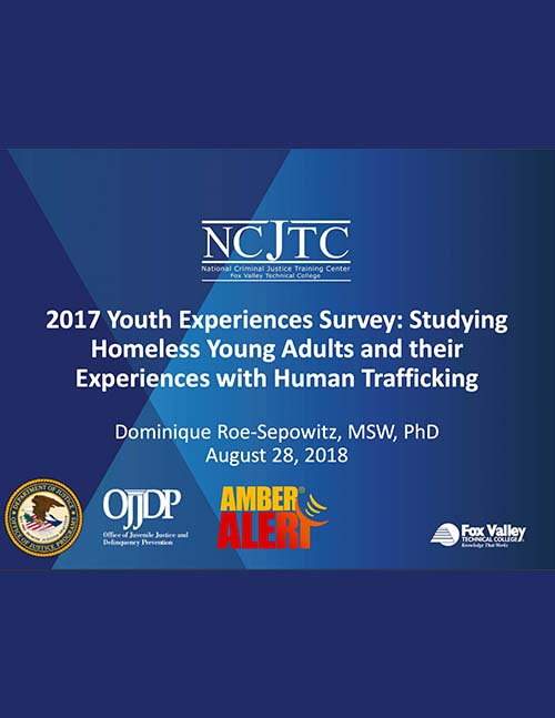 2017 Youth Experiences Survey: Webinar Presentation Image