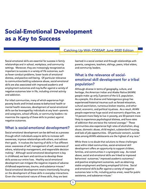 Social Emotional Skill Development as a Key to Success - Resource